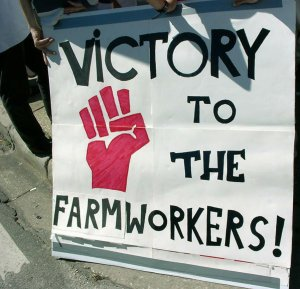 Victory to the Farm-Workers!