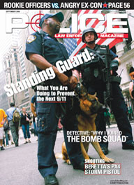 "Here's a cover with a photo of an armed cop standing next to a National Guard soldier with a flag in the background, captioned ""Standing Guard"""