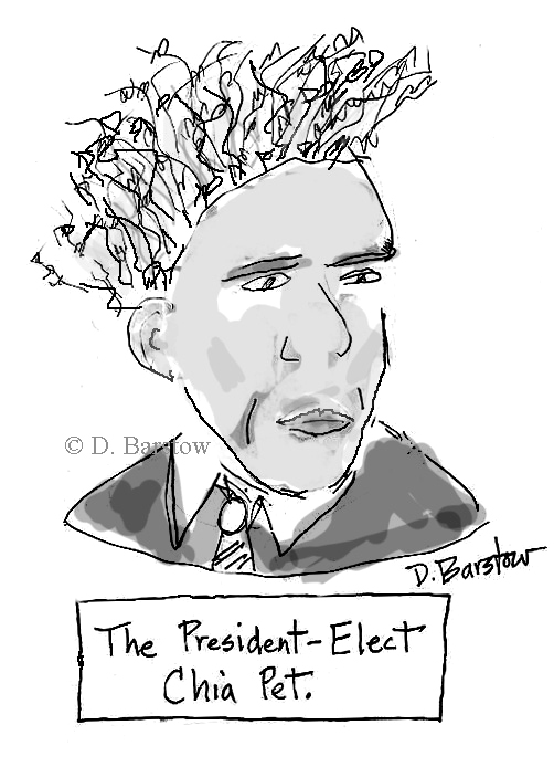 "A cartoon of Barack Obama with wavy, kinky hair standing on end, inscribed ""The President Elect Chia Pet"""