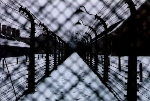 photo: Barbed wire perimeter fence at Auschwitz